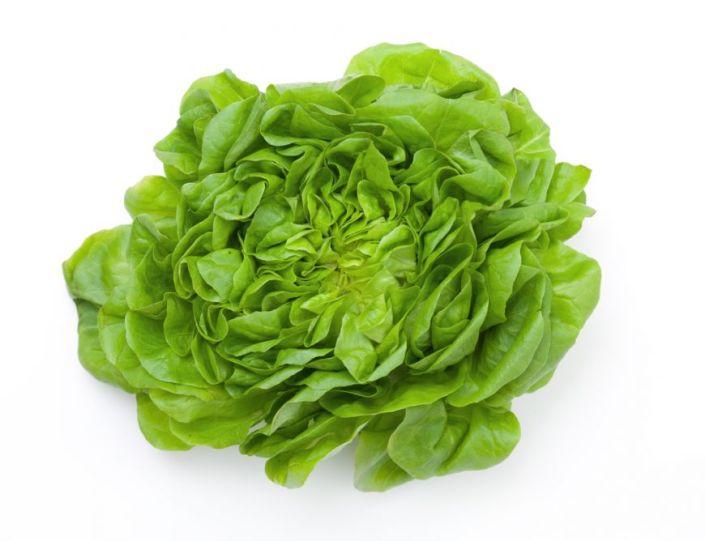 leguma-saptamanii-salata-verde_size1