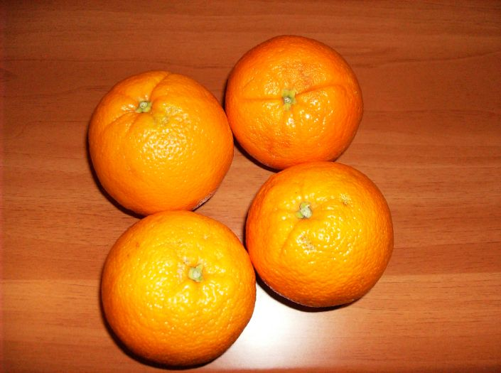 Charlotte de portocala 005