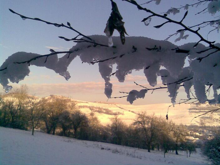 Peisaj_Veta_iarna