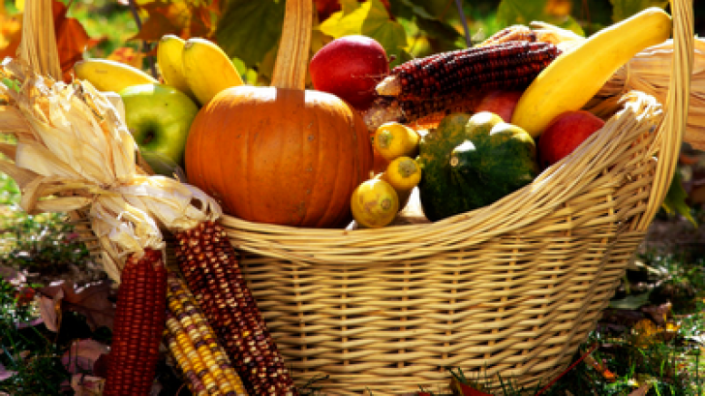 autumn_harvest_basket_77432500