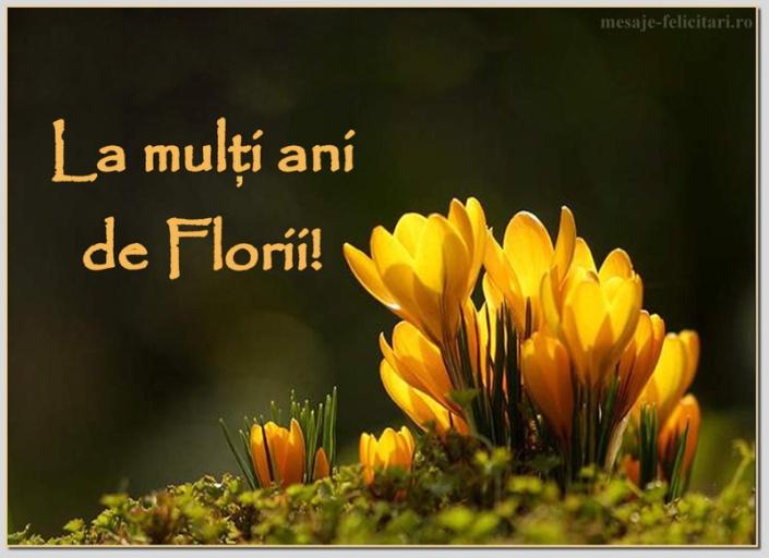 florii-mesaje