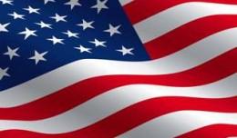 steagul-american-260x152